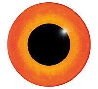 Ögon M26 24mm