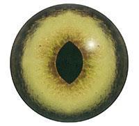 Ögon U31 22mm