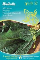Kål Grön- Svart- 'Nero di Toscana'