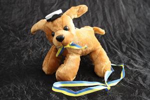Studenthund brun med hänge 12/fp