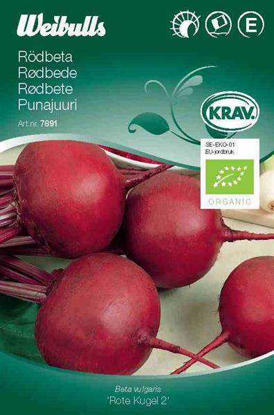 Rödbeta 'Rote Kugel 2' Krav Organic