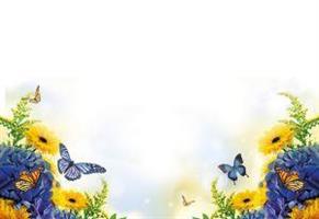 Oasis Kort Biue&Yellow Flower W/Bfly