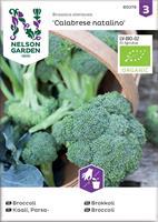 Broccoli Calabrese natalino, Organic