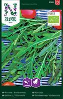 Rucola/Sandsenap Organic