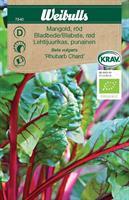Mangold 'Rhubarb Chard' röd Krav Organic