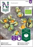 Gyllenbär Organic