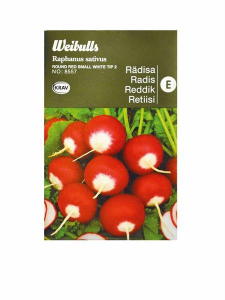 Rädisa 'Round Red Small White Tip 2' Krav Organic
