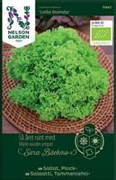 Sallat Plock- 'Lollo Bionda' Organic