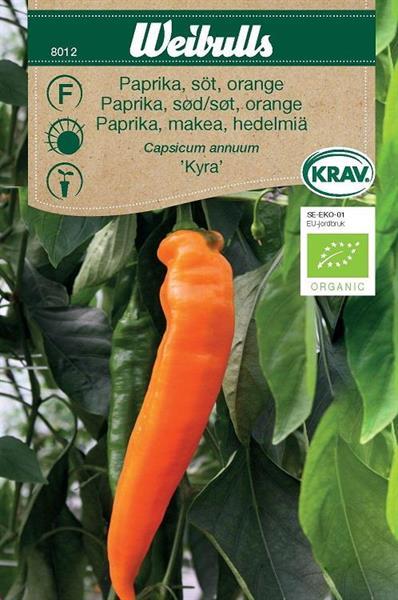 Paprika 'Kyra' söt orange Krav Organic