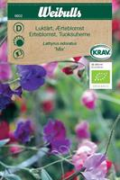 Luktärt 'Mix' Krav Organic