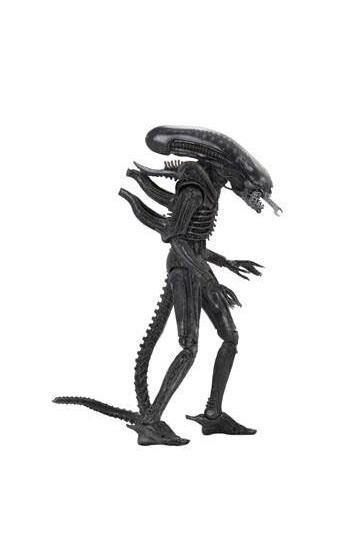 Alien 40th Anniversary, Alien