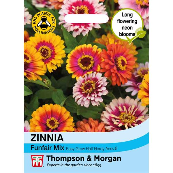 Zinnia 'Funfair' Mix