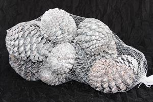 Kottar maritma 8-12cm vit 12/fp