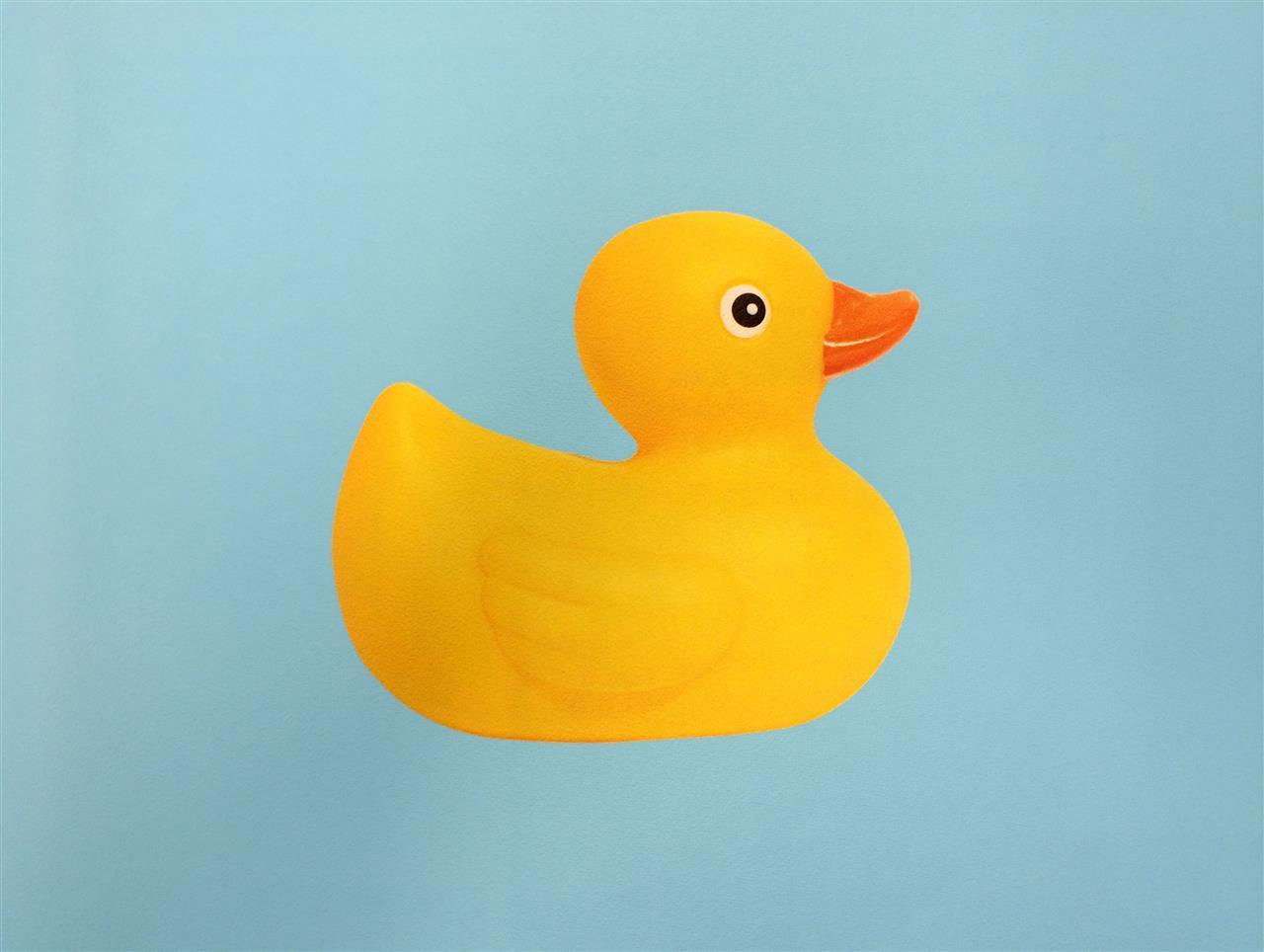 Fototap.Happy Duck 325x260