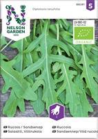 Rucola/Sandsenap Vild rucola, Organic
