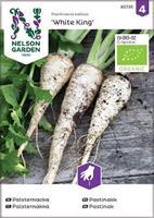 Palsternacka 'White King' Organic
