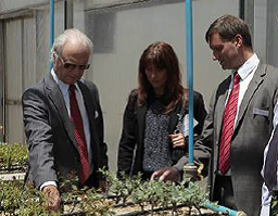 Swedish-Brazilian biorefinery project POLYNOL completed