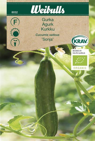 Gurka 'Sonja' KRAV Organic