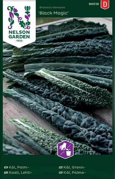 Kål Grön- Svart- 'Black Magic'