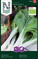 Mangold 'White Silver 3' Organic