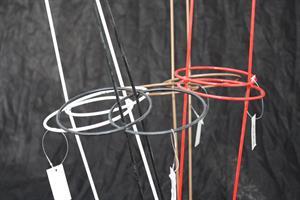 Amaryllisstöd olika färger 5/fp