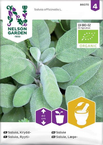 Salvia Krydd- Organic