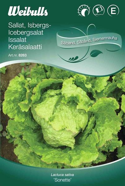 Sallat Isbergs- såband