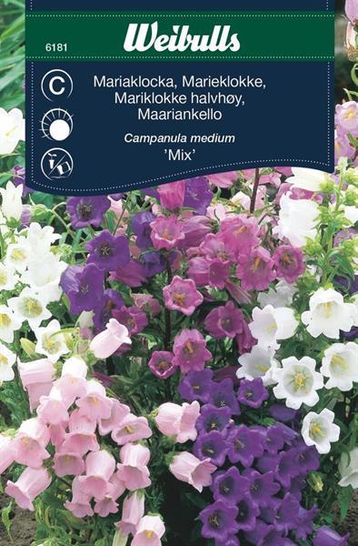 Mariaklocka mix