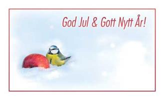 Kort God Jul&Gott Nytt År! Blåmes 100/fp