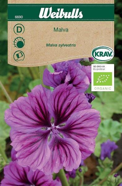Malva 'Mauritanica' Krav Organic