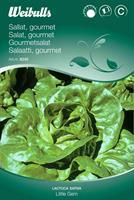 Sallat Roman- 'Little Gem' Gourmet