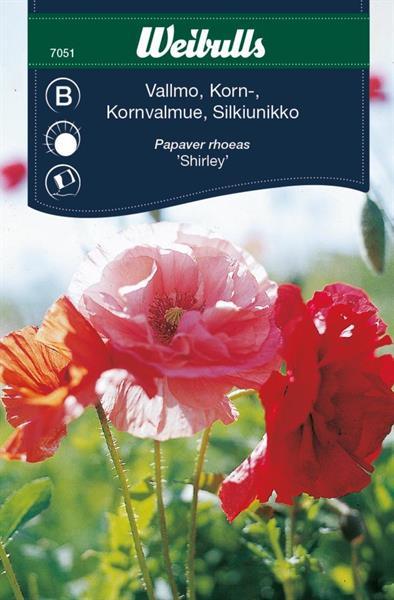 Vallmo Korn- 'Shirley'
