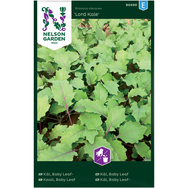 Kål Grön- 'Lord Kale'