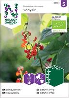 Böna Rosen- Lady Di, Organic