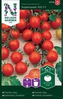 Tomat Körsbärs- 'Supersweet 100'