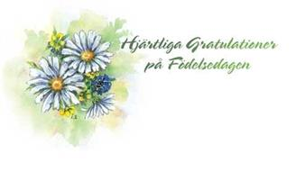 Kort Hjärtliga gratulationer 100/fp