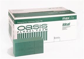 Oasis Ideal block 20/krt