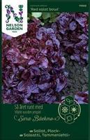 Sallat Plock- 'Red Salad Bowl'