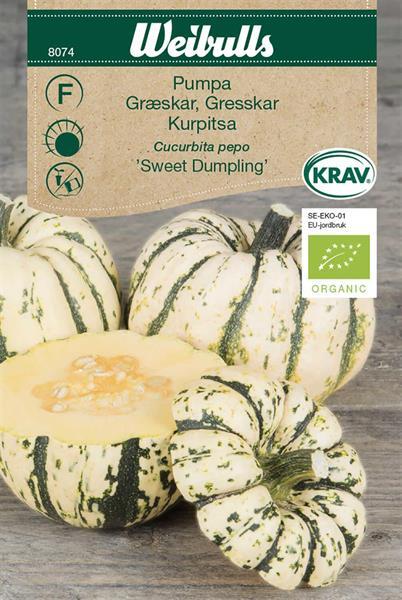 Pumpa 'Sweet Dumpling' KRAV Organic