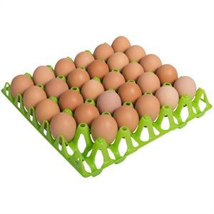 Äggbricka i plast
