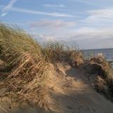 Hallands västkust, naturen som ger oss styrka o välmående