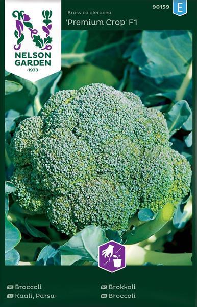 Broccoli 'Premium Crop' F1