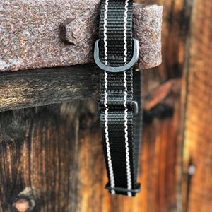 Halsband med spänne