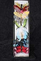 Fjäril mix 7 cm 12/fp
