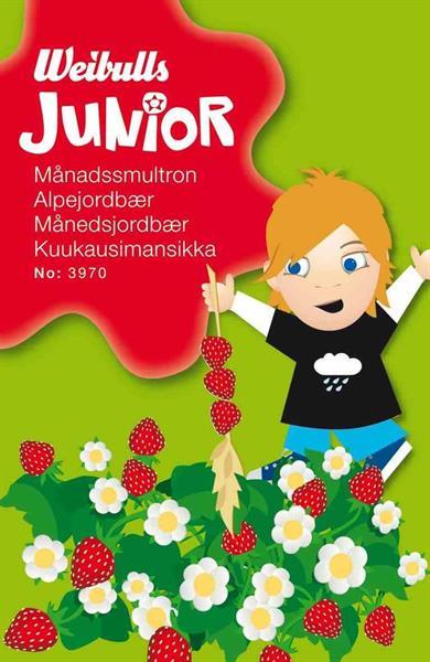 Junior månadssmultron
