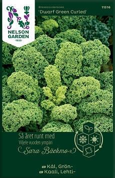 Kål Grön- 'Dwarf Green Curled'