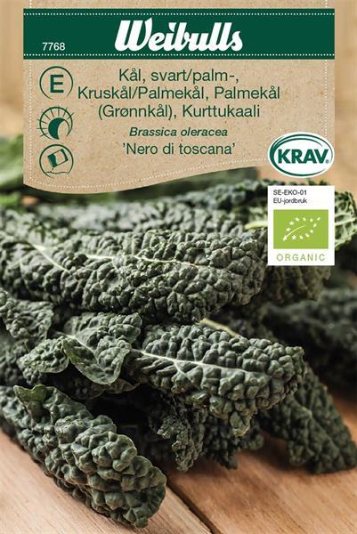 Kål Grön- Svart- Palm- 'Nero di Toscana' KRAV Organic