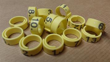 Märkring 12 mm - numr. 1-15