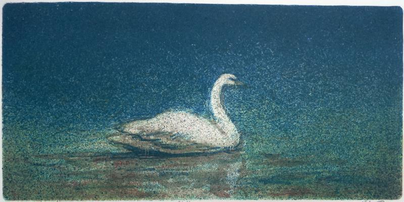 """Stille vann"" litografi 15 x 31 cm."