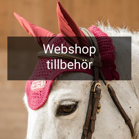 Equipe webshop tillbehör träns putsmedel